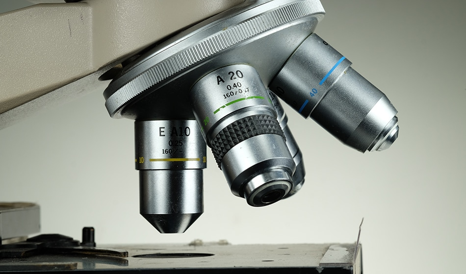 Optical Microscopy - s.sermram / Shutterstock