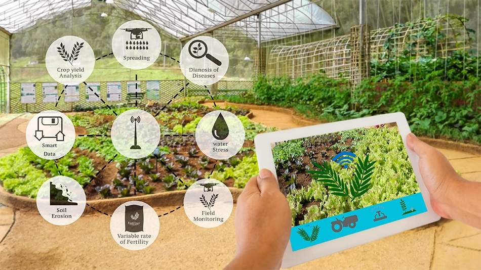 Advancements in Sensor Technology for Agriculture