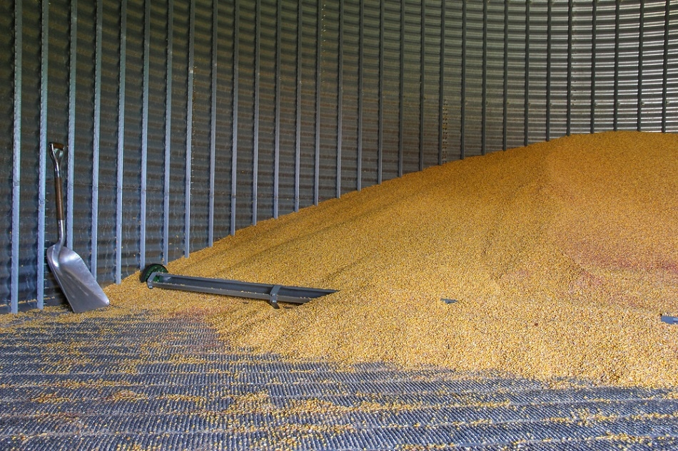 Stored Grain Quality
