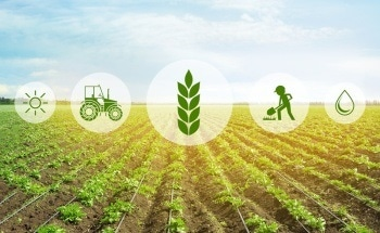 Using Sensors in Food and Agriculture