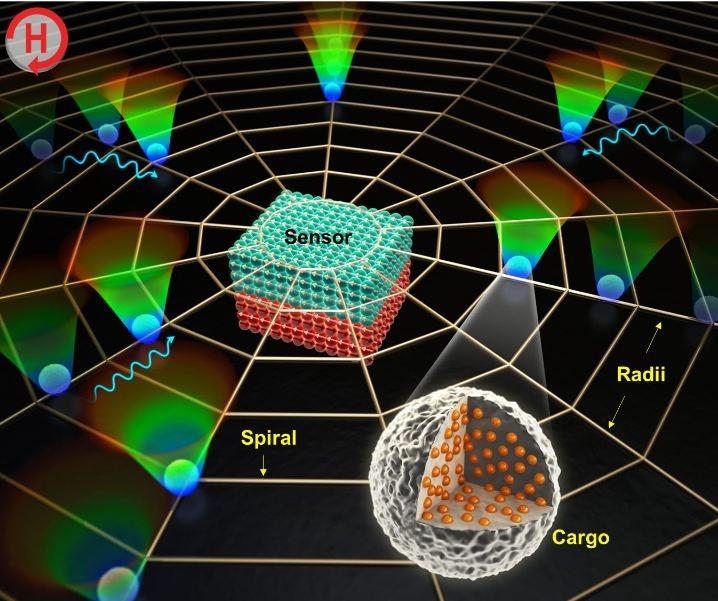 DGIST Researchers Develop New Biosensor Using Magnetophoretic Spider Web