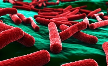 Researchers Develop New Biosensor That Could Be Used To Detect E.Coli