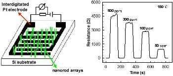 Vertically Aligned WO3-CuO Core-Shell Nanorod Arrays Detect Toxic NH3 Gas