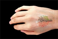 New Finger-Worn Sensor Could Monitor Stroke Survivors' Upper Limb Movements