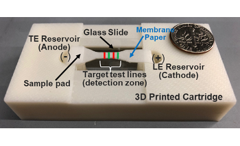 New Paper-Based Sensor Could Support Early Cancer Detection