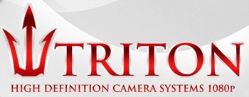 Triton Security Service logo.